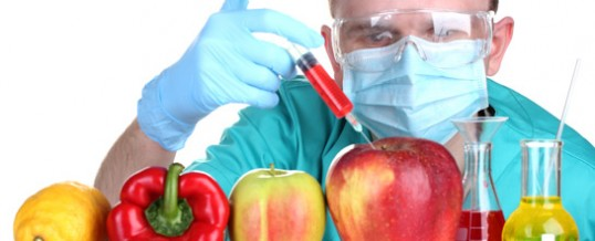 What's the Big Deal About Genetically-Modified Organisms?