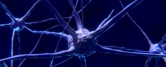 An Integrative Approach to Neuropathy