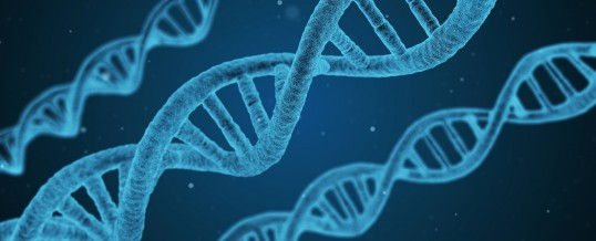 DNA Analysis: A Great Tool to Optimize Your Health
